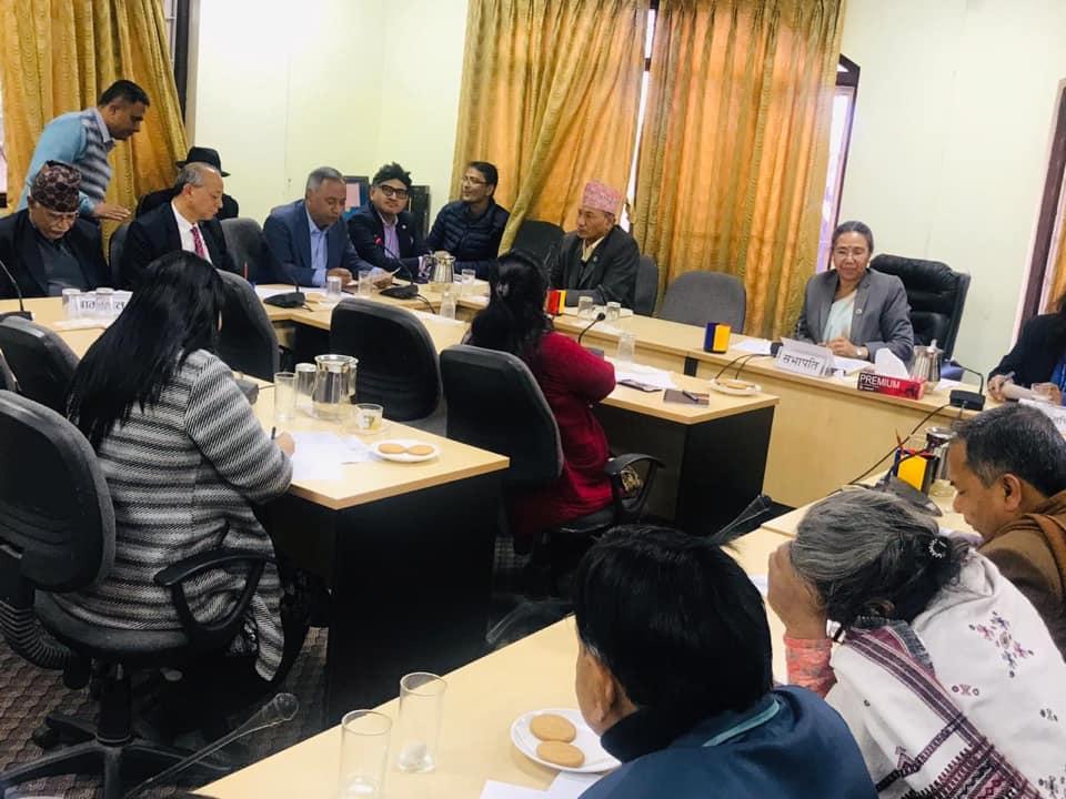 संसदिय समितिमा एनआरएनको माग : नेपाली नागरिक सरह नागरिकता पाइयोस्