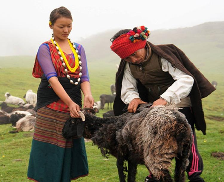 पत्रकार मानछिरिङ तामाङ निर्देशित नेपाली वृत्तचित्र अमेरिकाको फिल्म महोत्सवमा छनोट