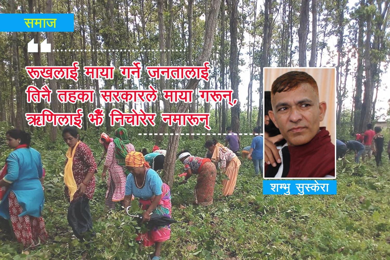 'सामुदायिक वनप्रति अनुदार नहुन् सरकारहरु…'