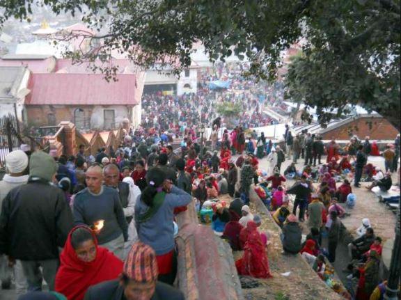 आज बालाचतुर्दशी, पशुपतिनाथ मन्दिरलगायत देशभरका शिवमन्दिरमा विहानैदेखि घुइचो