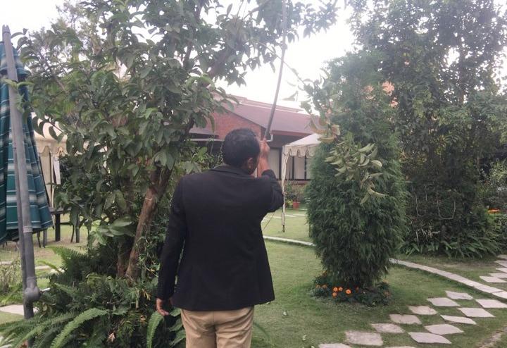 'सम्पदा गार्डेन'को मनमोहकता : 'हलुईबेद, अमला र अम्बा' आफै टिपेर खान पाइने